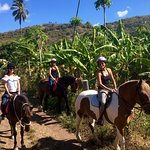 Riding past papaya, banana, mango trees!