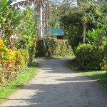 Photo de Physis Caribbean Bed & Breakfast