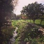 Photo de Agriturismo Su Leunaxiu
