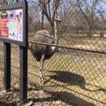 Foto di Henry Vilas Zoo