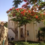 Tamra Residence Apartment Resort Managed by Egyptian Vacation Club Photo