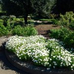 Beautiful gardens and picnic area.