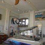 Jurassic Coast Gallery