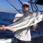 Roosterfish - fishing in Puerto Vallarta with PV Sportfishing