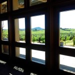 View from inside the tasting room.