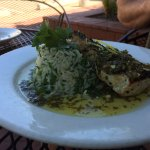Swordfish with spinach pilaf