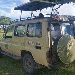 Waterbuck Safaris Foto