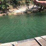 Bridge in Belize