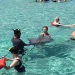 My wife and a friendly sting ray, one of hundreds we saw that afternoon