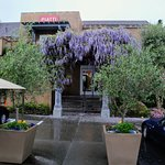 Piatti exterior (in the Spring) with blooming wisteria