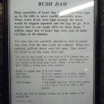 Bush dam story.