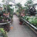 Bild från Växthuscafeet