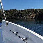 Photo of Excursion en Barco Adela