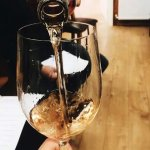 we provide some of THE best wines.