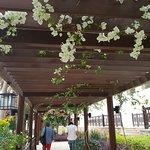 Photo of Jordan Valley Marriott Resort & Spa