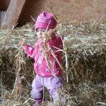 Photo of Jucker Farm