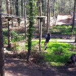 Junior Go Ape At Moors Valley - Course 1 & 2.