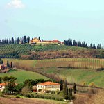 Panoramas of the Tuscan vineyards and small farms are everywhere. The light is amazing!