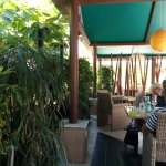 Foto de Thai Botanico