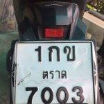 received_10155148358989898_large.jpg