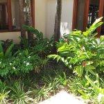 Villas entourées d'eau et de fleurs, en plus de la piscine.
