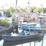 Working fishing boats in Crystal River