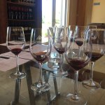 Tasting reds at Morgenster Estate