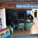 Free Willy shop front