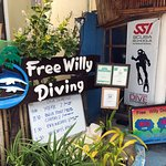 Free Willy Diving Foto