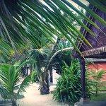 Photo of Hotel Club Paradise