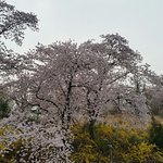 Photo of Hilton Gyeongju
