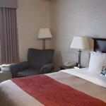 Photo de Comfort Inn Mississauga