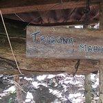 Finca Verde Lodge Tours