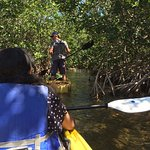 Guide looking for flora/fauna to show and explain while we Kayak behind him