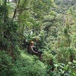 ziplining through the rainforest
