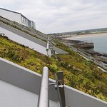 Growing Grass on the Roof is an enviro-friendly measure
