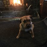 Exceeding expectations. Lovely cosy pub serving delicious food with attentive front of house. Do