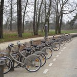 Velib bikes in the Bois de VIncennes, near Lac Daumesnil (and the zoo)