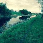 Royal Canal Way