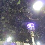 IMG_20170322_214519_large.jpg