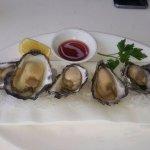 Fresh Merimbula Oysters