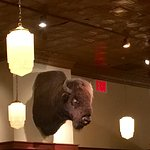 A Bison head hanging from the wall.