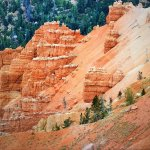 Cedar Breaks National Monument Foto