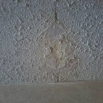 Ceiling patch jobs....this one was damp....awesome.