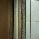 The molding between the wood floor an tile bathroom...lifted right off...great job!!