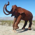 An extinct Mammoth.