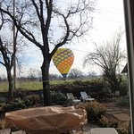 Foto di Up & Away Ballooning