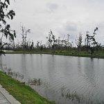 Photo de Taitung Forest Park
