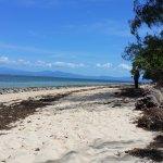 Green Island Foto
