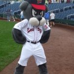 Slugger greeting the runners..